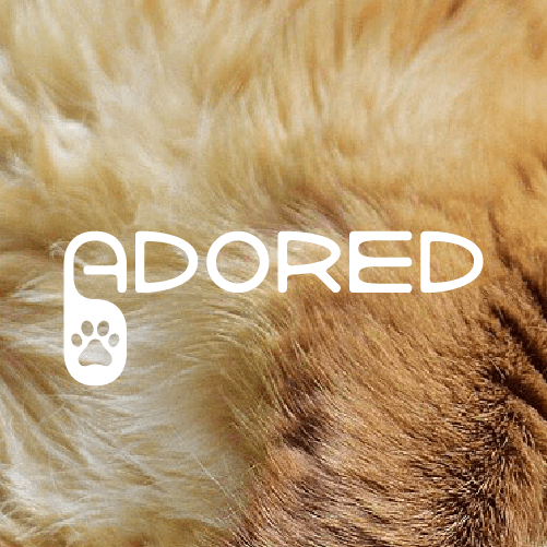 Adored <br> Webdesign, Logo design, Web development